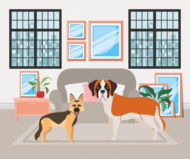 Cachorrinhos fofos na sala de visitas