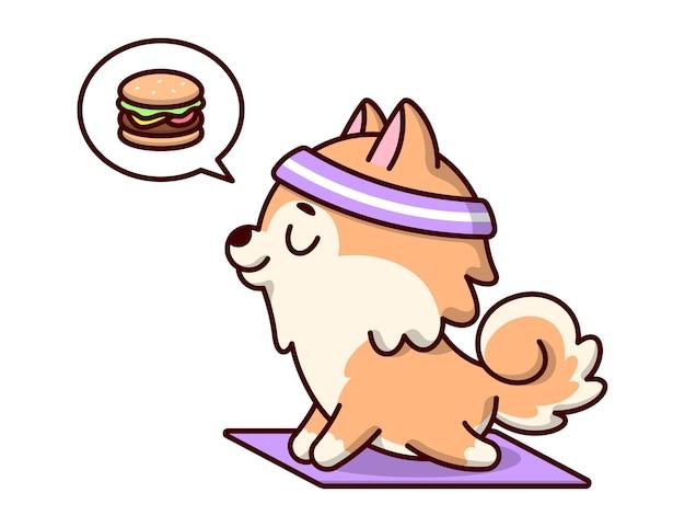 Cachorro brown bonito está pensando um hambúrguer enquanto faz a posição de ioga