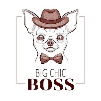Cachorro chihuahua chefe doodle design de impressão de t-shirt.