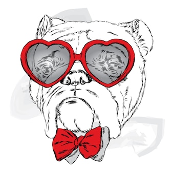 Cachorro com óculos de coração dia dos namorados