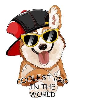 Cachorro corgi com chapéu e óculos.