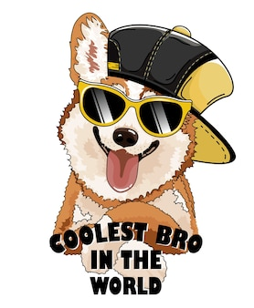 Cachorro corgi com chapéu preto e óculos.