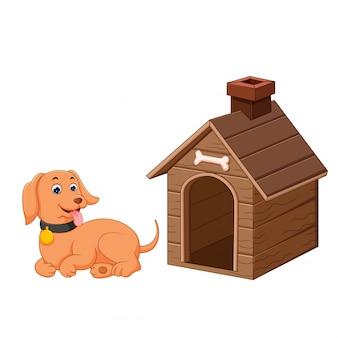 Cachorro e casa de cachorro de estimação