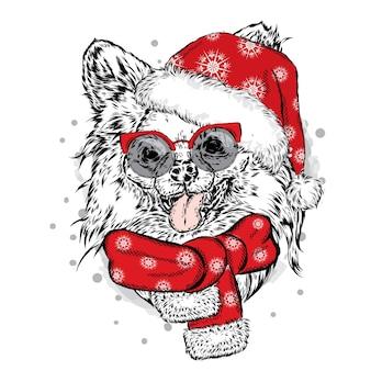 Cachorro engraçado com chapéu e lenço de ano novo. natal.