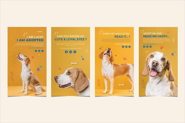 Cachorro fofo adota histórias de instagram Vetor Premium