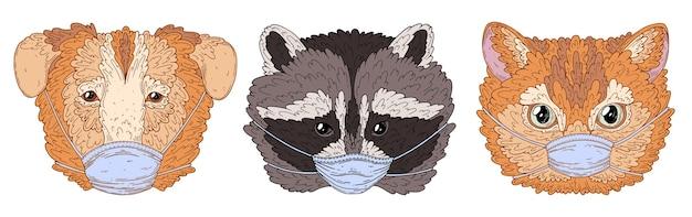 Cachorro-gato e guaxinim com máscaras médicas