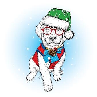 Cachorro lindo com chapéu de natal
