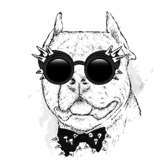 Cachorro lindo com óculos elegantes e gravata com pontas