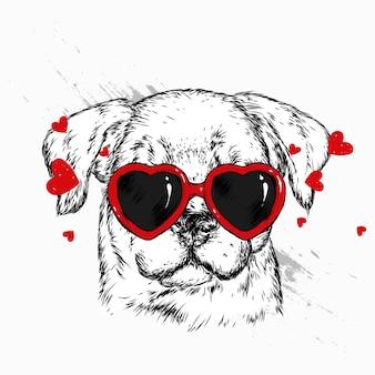 Cachorro lindo de óculos com corações