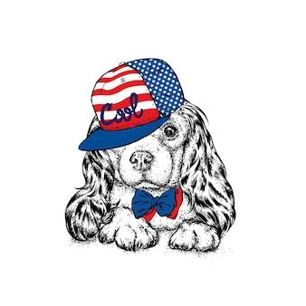 Cachorro lindo hippie em roupas elegantes