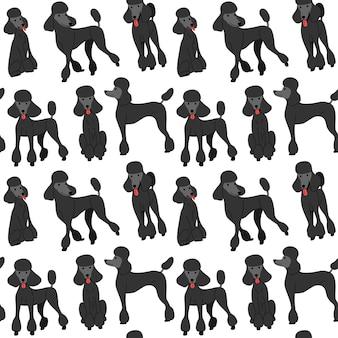 Cachorro poodle preto em ação