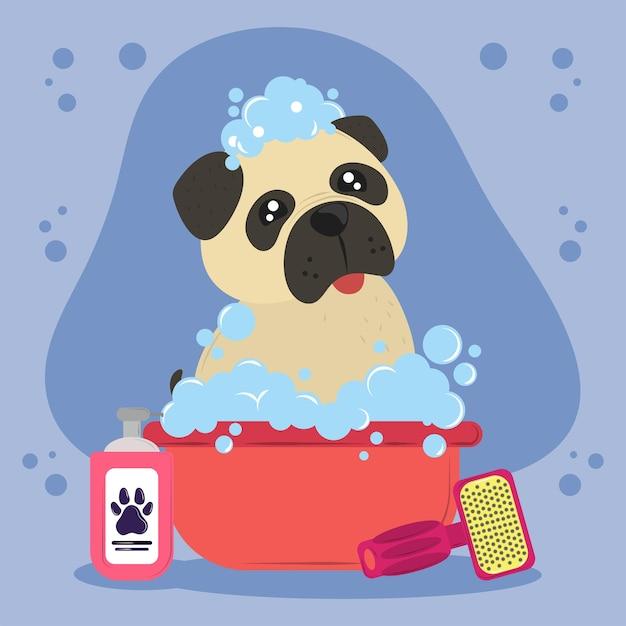 Cachorro tomando banho de espuma