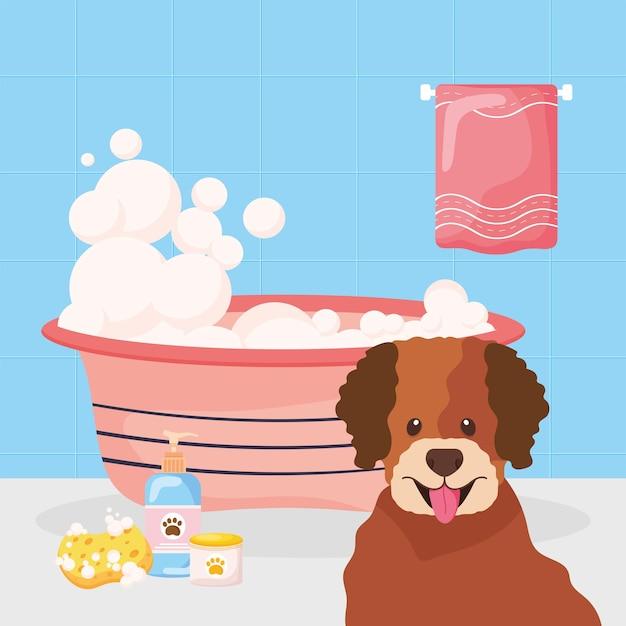 Cachorro tomando banho