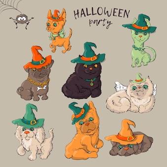 Cachorro usando chapéus engraçados e fantasia de halloween