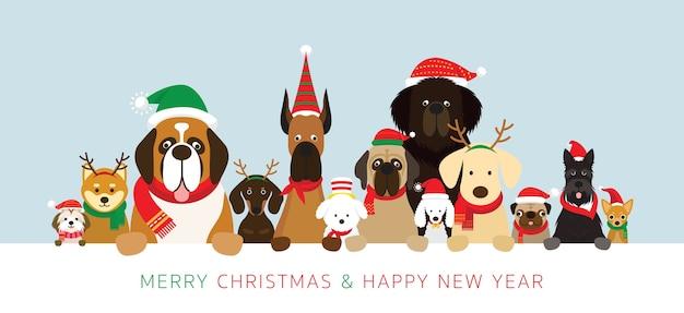 Cachorros em fantasias de natal