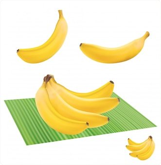 Cachos de frutas frescas de banana isoladas