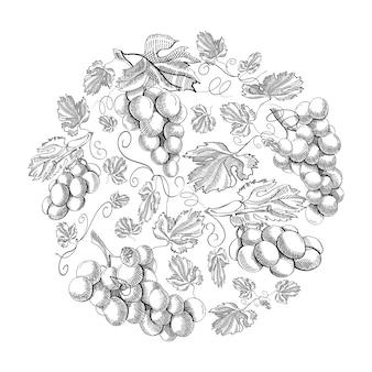 Cachos de uva com padrão de círculo repetindo lindas frutas na mão branca.