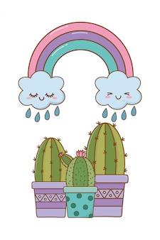 Cacto com nuvem e arco-íris