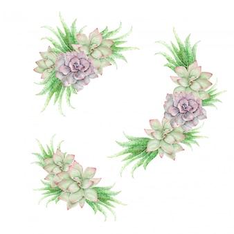 Cactos em aquarela e ornamentos florais vintage de aloe vera