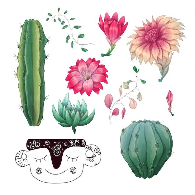 Cactos em vasos e plantas suculentas conjunto de coleta de crachá.
