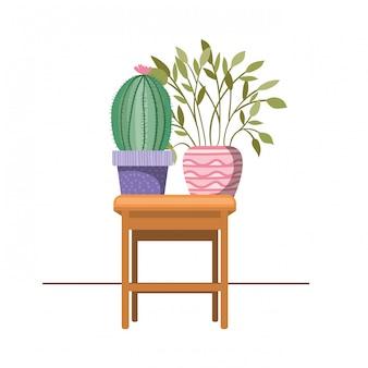 Cactus com vaso no ícone da mesa