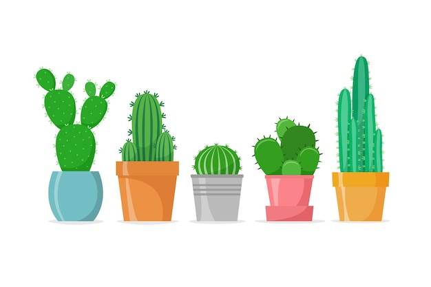 Cactus definido em um estilo simples cactos caseiros diferentes em vasos suculentas caseiras vector