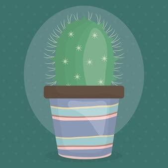 Cactus planta exótica em vaso de cerâmica