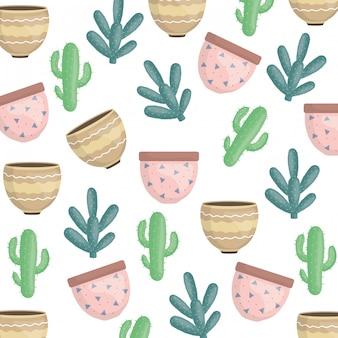 Cactus plantas exóticas e padrão de potes de cerâmica