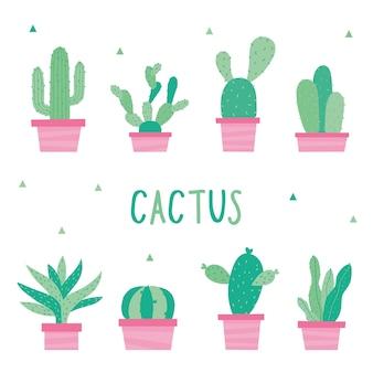 Cactus plants pot flower prickle vetor de desenhos animados