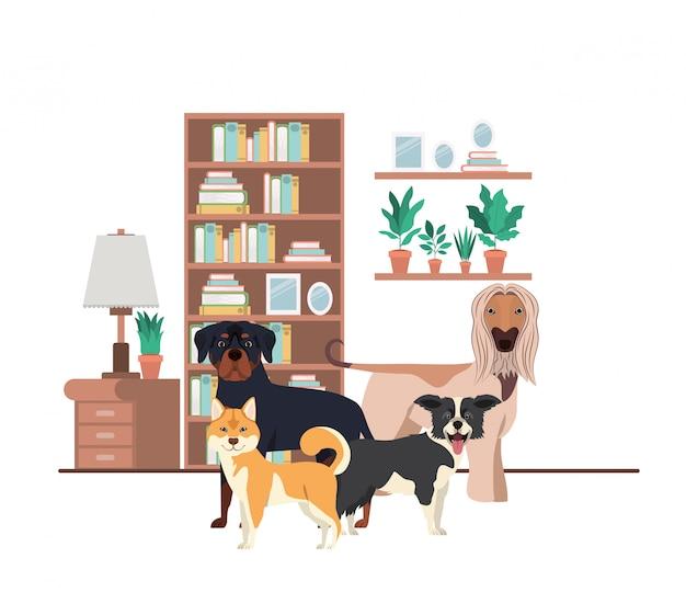 Cães bonitos e adoráveis na sala de estar