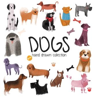 Cães - coleção desenhada mão