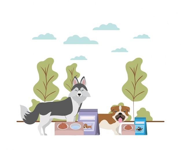 Cães com tigela e alimentos para animais na paisagem