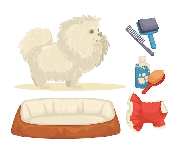 Cães conjunto de acessórios para cães.