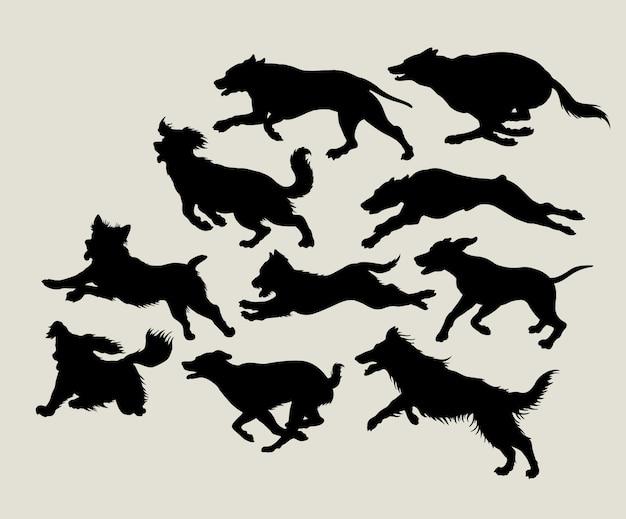 Cães correndo silhueta