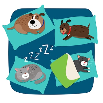 Cães e gatos adormecidos
