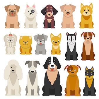 Cães engraçados diferentes em estilo cartoon isolado