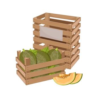 Caixa de madeira cheia de melão