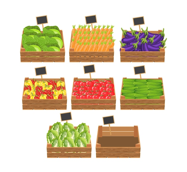 Caixas com legumes frescos.