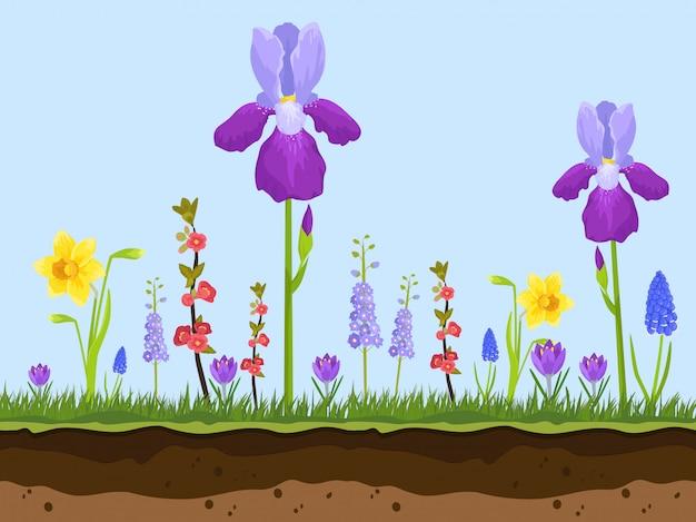 Camadas de flores, grama verde e terra dos desenhos animados