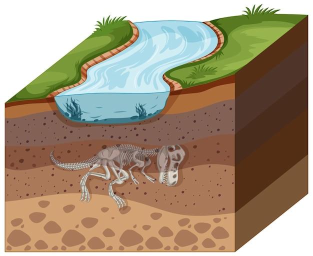 Camadas de solo com fóssil de dinossauro