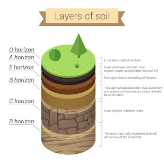 Camadas do solo. o solo é uma mistura de resíduos vegetais e partículas minerais finas, que formam camadas. diagrama.