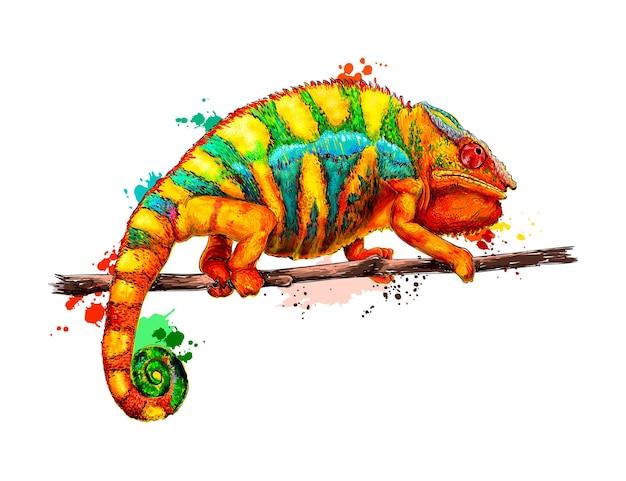 Camaleão com um toque de aquarela