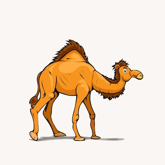 Camelo árabe estilo desenho animado nas costas brancas