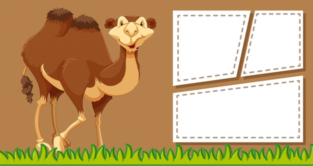 Camelo no fundo da nota