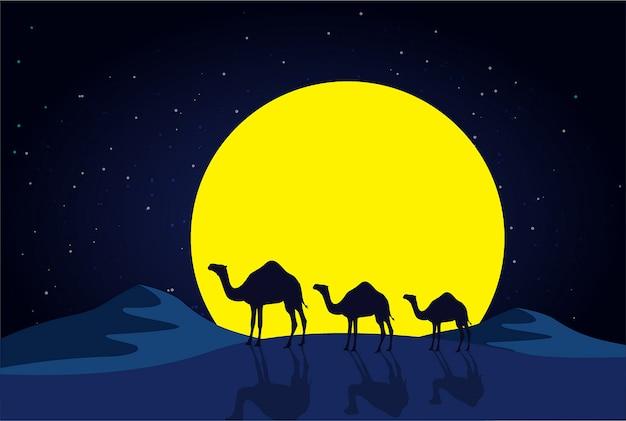 Camelos na noite no deserto