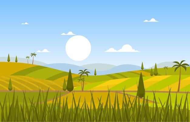 Campo de arroz asiático paddy plantation agricultura paisagem ilustração