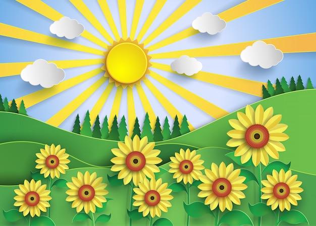 Campo de flor do sol