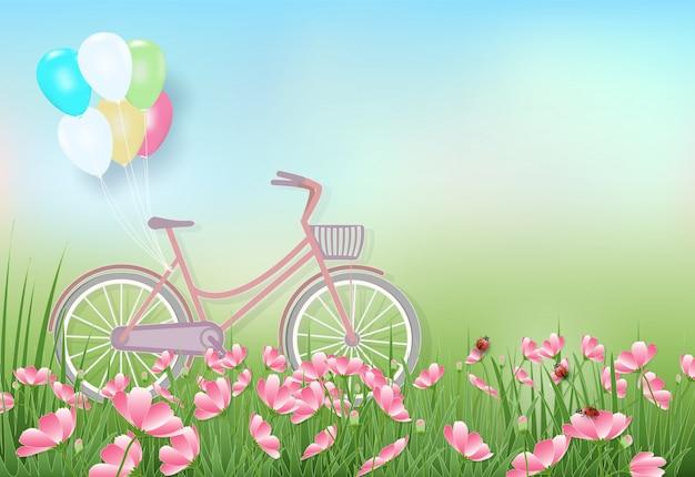 Campo de flores do cosmos e bicicleta primavera ilustração