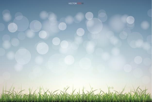 Campo de grama verde com fundo claro desfocado bokeh