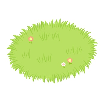 Campo de gramíneas.